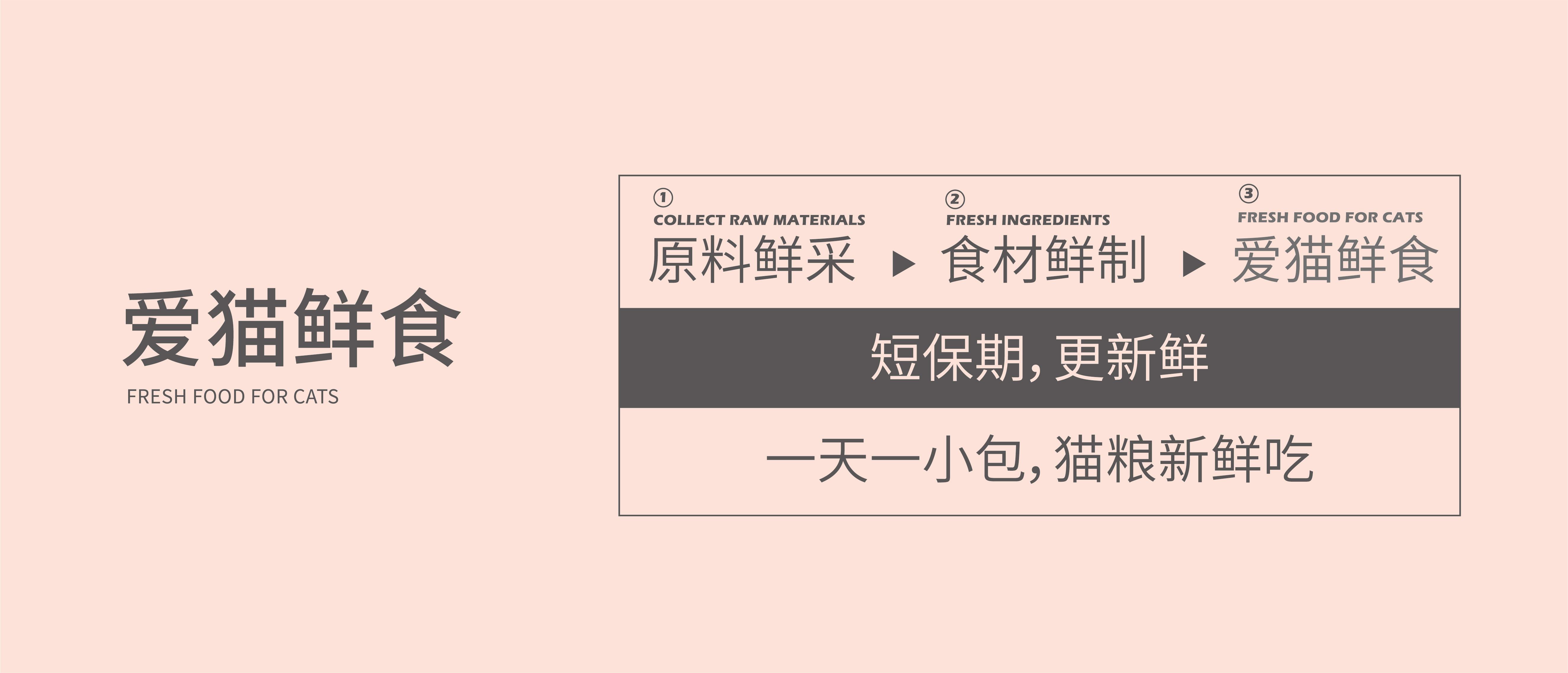 未标题-1_画板 1.jpg